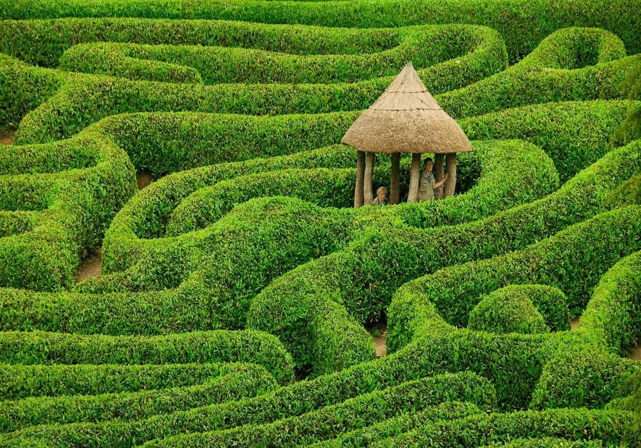 К чему снится сад зелёный