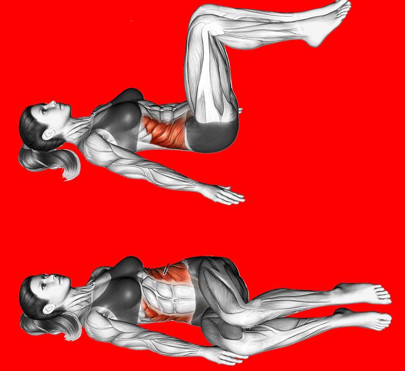 Сжечь Жир Питай Мышцы. Как сжигать жир без потери мышечной массы
