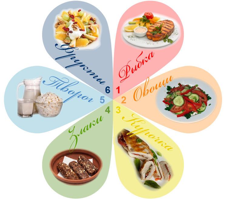 Диета Шесть Лепестков О. Диета «6 лепестков». Меню на каждый день, подробно на неделю с указанием времени, порций. Рецепты блюд и результаты